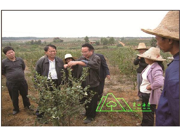 油茶專家·中國亞林中心高級工程師趙學民基地指導工作