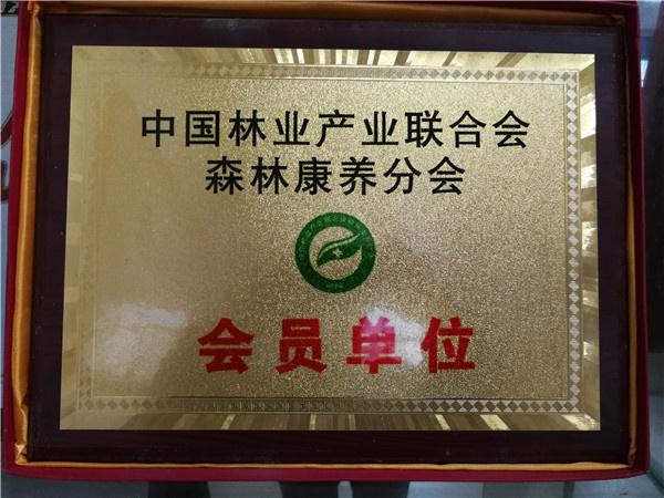 中國林業產業聯合會會員單位